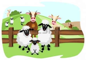 11084282-two-cute-cows-and-three-sheep-on-pasture-with-a-wooden-fence-and-landscape-in-background-1